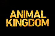 'Animal Kingdom' Renewed For Season 4