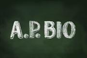 A.P. Bio on Peacock