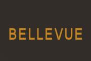 Bellevue on WGN America