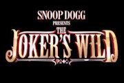 Snoop Dogg Presents The Joker's Wild on TNT