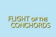 Flight of the Conchords on HBO