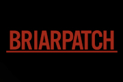Briarpatch on USA Network