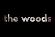 The Woods on Netflix