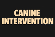 Canine Intervention on Netflix
