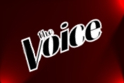 'The Voice' Returning For Season 17
