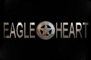 Eagleheart on Adult Swim