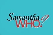 Samantha Who? on ABC