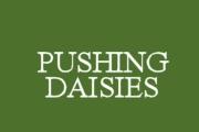 Pushing Daisies on ABC
