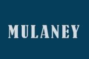 Mulaney on Fox