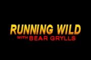 Running Wild with Bear Grylls on Nat Geo